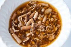 蘑菇白蚁 免版税图库摄影