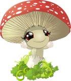 蘑菇的以图例解释者 库存图片