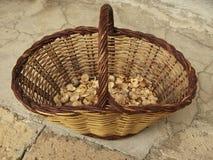 蘑菇篮子 库存图片