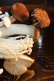蘑菇背景 库存照片