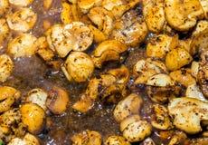 蘑菇芬芳蘑菇开胃开胃菜, prepar的汤 库存照片