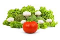 蘑菇莴苣 库存图片