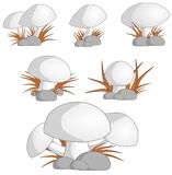 蘑菇蘑菇 免版税图库摄影