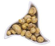 蘑菇被盐溶的用卤汁泡的蘑菇 免版税库存图片