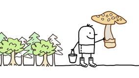 蘑菇采摘 库存图片