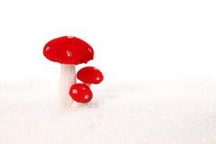 蘑菇雪 库存图片