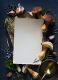 蘑菇食谱;烹调背景的秋天;有机porcini Mu 免版税库存图片