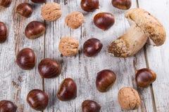 蘑菇,栗子,核桃 免版税库存照片