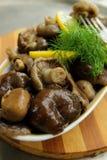 蘑菇,用卤汁泡和晒干用香料 免版税库存图片