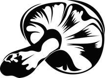 蘑菇,画在黑白 免版税图库摄影