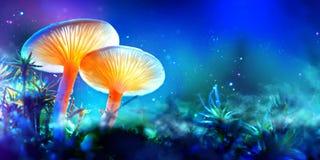 蘑菇 幻想发光的蘑菇在奥秘黑暗森林里 免版税库存照片