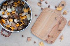 蘑菇黄蘑菇和清晰Porcini 免版税库存照片