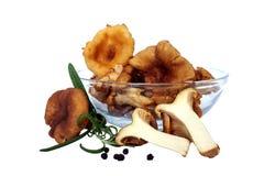 黄蘑菇 库存图片