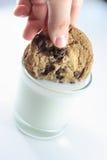 蘸牛奶的曲奇饼 库存照片