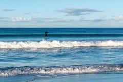 虚度光阴在浅海波浪的冲浪者 免版税库存照片