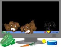 虚拟运行来的宠物 免版税库存图片