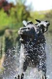 虚构物形状的喷泉 图库摄影