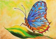 虚构的蝴蝶绘画  免版税库存图片