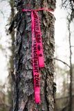 虫管理丝带被栓对要求撤除的树 免版税库存图片