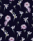 虹膜和菊花在蓝色背景 免版税库存照片