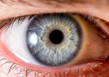 虹膜摄影 眼珠的接近的宏观射击 淡蓝和白色与火山口和卷须 免版税库存图片