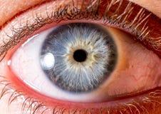 虹膜摄影 眼珠的接近的宏观射击 蓝色和白色与火山口和卷须 免版税图库摄影