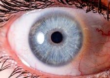 虹膜摄影 眼珠的接近的宏观射击 蓝色和白色浅火山口 免版税库存图片