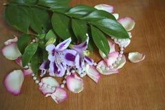 虹膜花束有玫瑰花瓣的 免版税库存图片