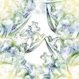 虹膜 无缝的模式 花、叶子、虹膜的词根和芽 水彩绘画墙纸 免版税库存照片