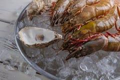 虾和贝壳 免版税库存图片