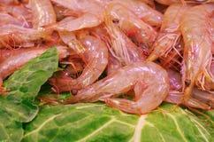 虾在市场上 免版税库存照片
