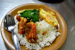 虾用大蒜和煎蛋在米 免版税图库摄影