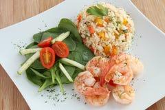 虾用米和沙拉 免版税库存图片