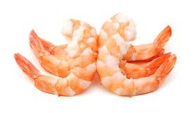 虾 大虾 免版税图库摄影