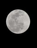 蚀洪都拉斯月球月亮被看见的总utila 库存照片