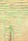 蚀船虫损坏的木头 库存照片
