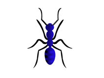 蚂蚁一点 免版税库存照片