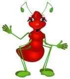 蚂蚁可笑的女性 库存照片
