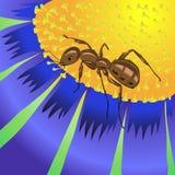 蚂蚁和花 皇族释放例证