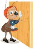 蚂蚁工作者操练墙壁 库存例证