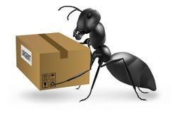 蚂蚁搭载邮递员紧急程序包的邮差 免版税库存图片