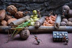 蚂蚁教蚂蚱工作,蚂蚁传说 免版税库存照片