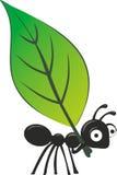 蚂蚁 向量例证