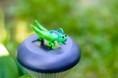 蚂蚱由彩色塑泥制成在自然本底 库存图片