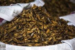 蚂蚱蟋蟀蛋白质纤巧街道食物在仰光缅甸缅甸 免版税库存图片