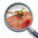 蚊子病毒 库存例证
