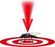 蚊子被杀害,害虫, 免版税库存图片
