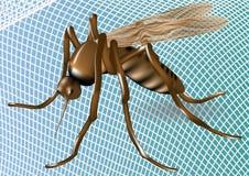 蚊帐和蚊子 库存照片