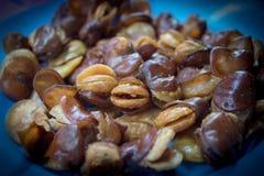 蚕豆,堆煮熟的面包豆 库存图片