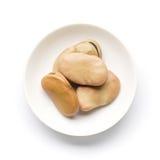 蚕豆(蚕豆) 免版税图库摄影